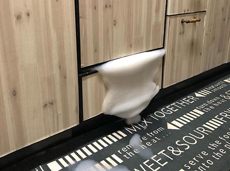 洗碗机故障 | 洗碗机吐了,吐了一大堆泡沫