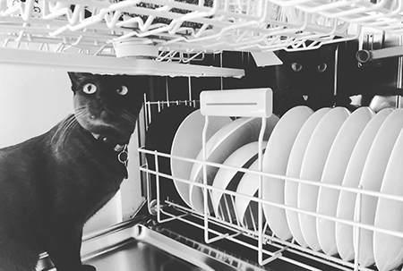 洗碗机的百年历史