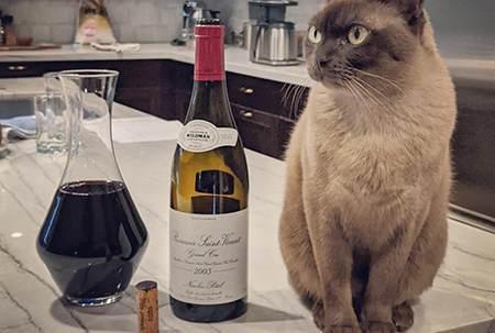 「葡萄酒扫盲读本」葡萄酒餐酒搭,其实概念很简单!