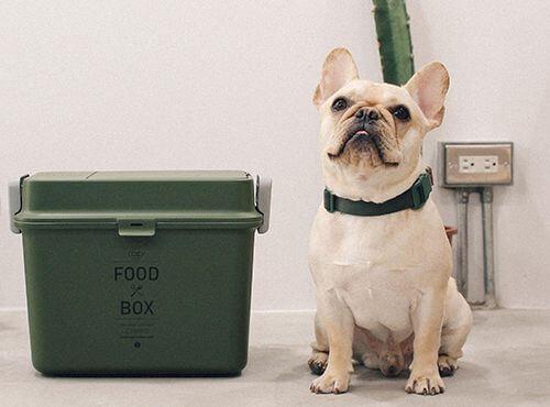 狗粮选购指南 | 想看狗狗开心到不行的脸蛋,那一定要挑选它喜欢狗粮