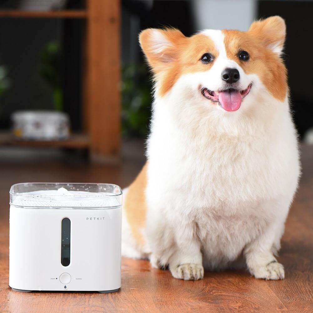 Petkit EVERSWEET宠物智能饮水机