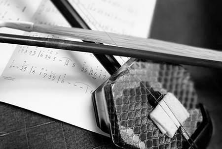 二胡选购指南 | 从音质、木质到蟒蛇皮,教你如何选择一把好二胡