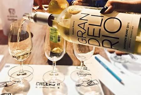 葡萄酒入门知识 | 常见葡萄酒的分类、产区,及等级